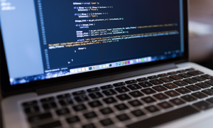 CSS and PHP training